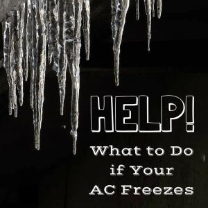 FLGreen_AC Freezes