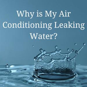 FLGreen_Water Leak